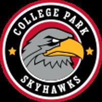 Skyhawks company logo